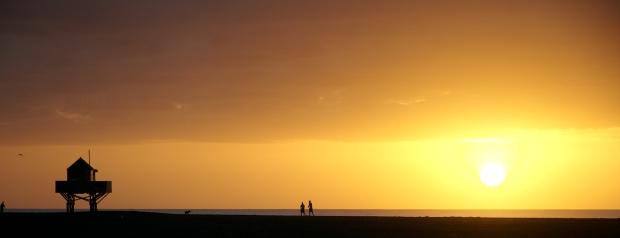 Te Henga Bethells sunset